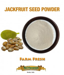 Jackfruit seeds Powder