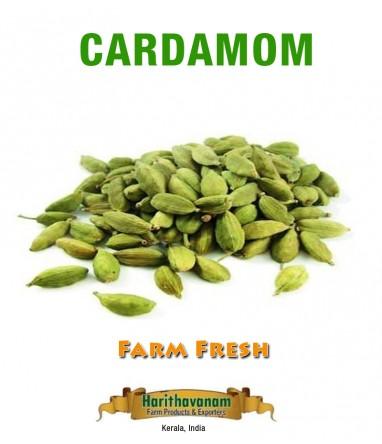 Cardamom (Elaichi)