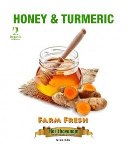 Honey and Turmeric combo natural immunity developer